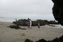 Mussel plockning